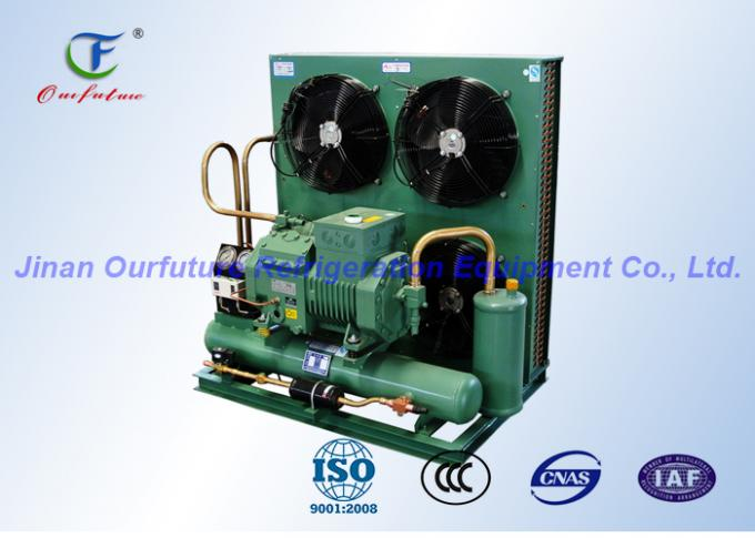 Bitzer Piston Low Temperature Condensing Unit for Marine Freezer